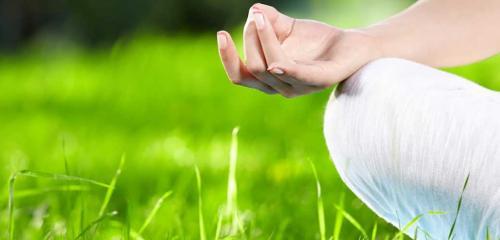 Yoga sensoriale nel bosco
